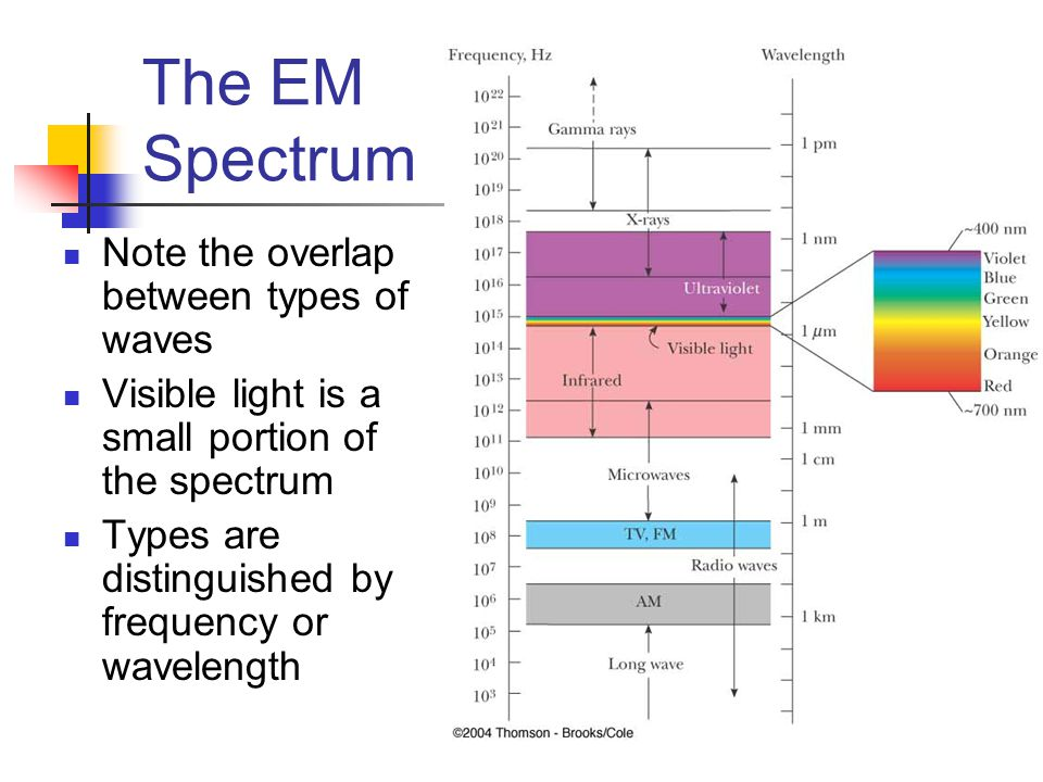 The EM Spectrum Note the overlap between types of waves Visible light is a small portion of the spectrum Types are distinguished by frequency or wavel