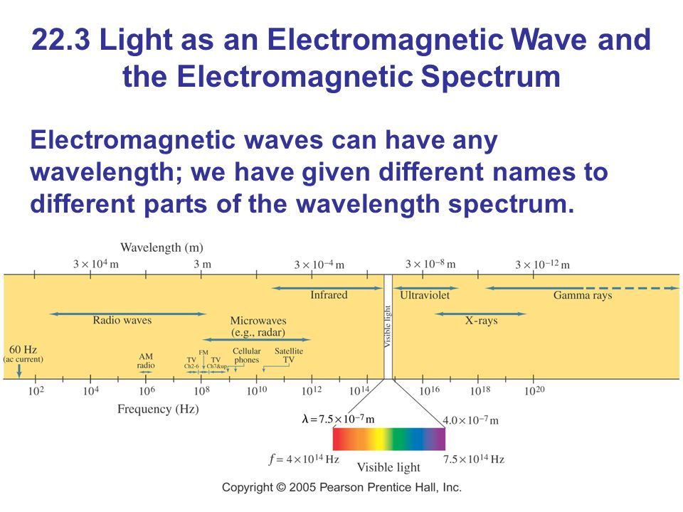 22.3 Light as an Electromagnetic Wave and the Electromagnetic Spectrum Electromagnetic waves can have any wavelength; we have given different names to different parts of the wavelength spectrum.