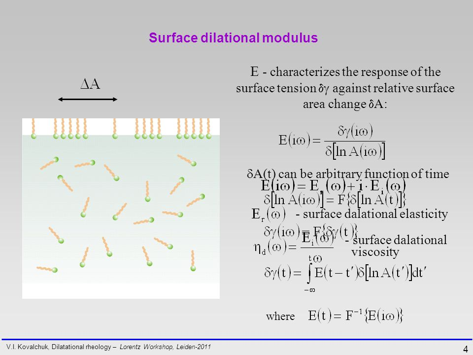 4 Surface dilational modulus E - characterizes the response of the surface tension   against relative surface area change  A: V.I.