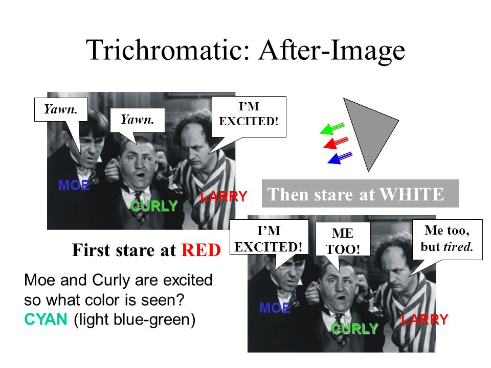 Trichromatic: After-Image First stare at RED I'M EXCITED.