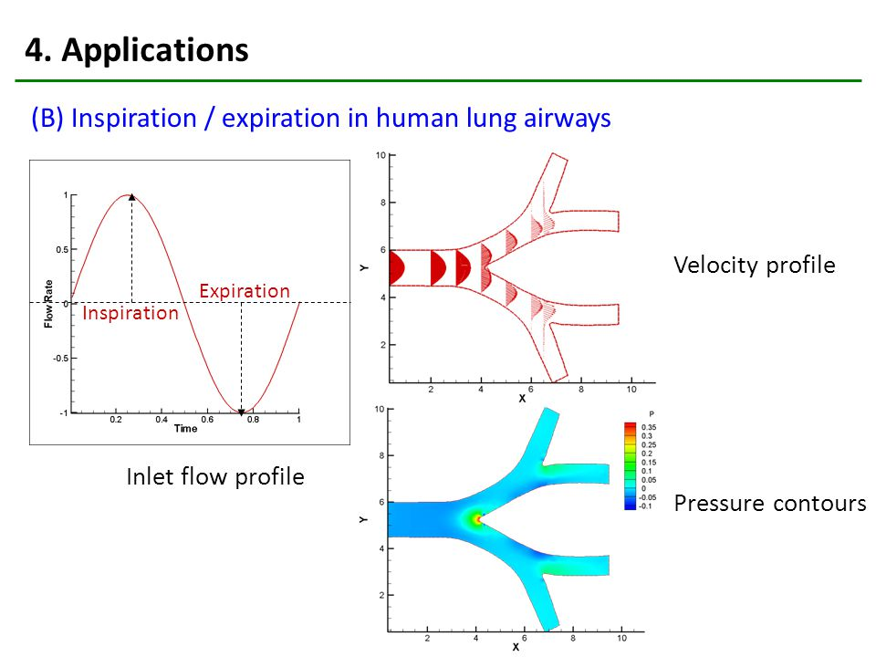 4. Applications (B) Inspiration / expiration in human lung airways Velocity profile Pressure contours Inlet flow profile Inspiration Expiration