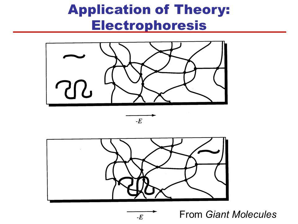 Application of Theory: Electrophoresis From Giant Molecules
