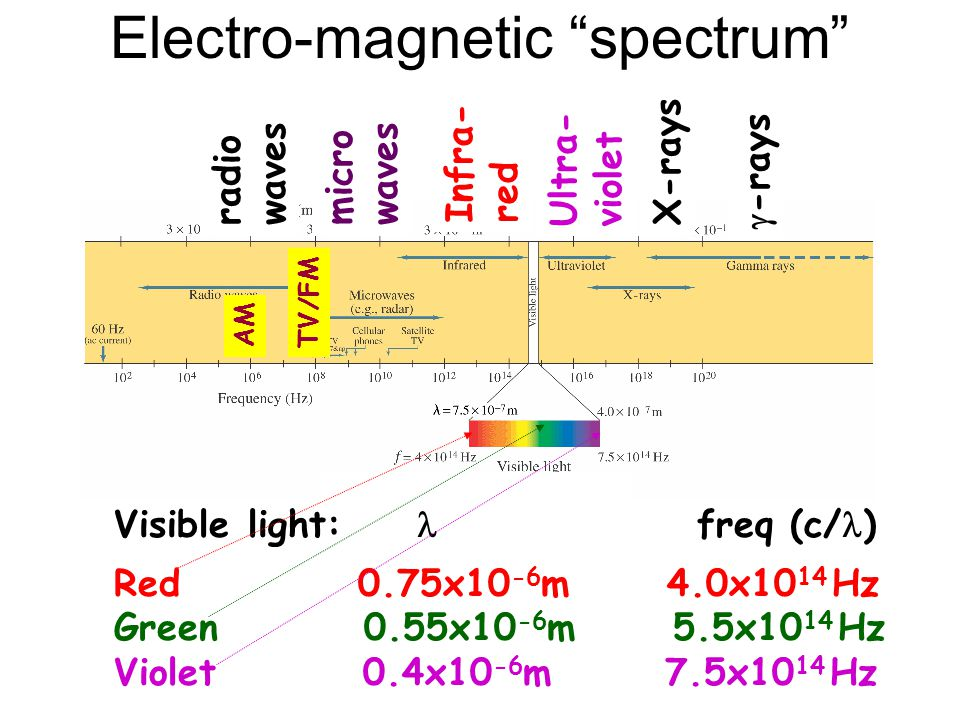 Electro-magnetic spectrum Visible light:  freq (c/ ) Red 0.75x10 -6 m 4.0x10 14 Hz Green 0.55x10 -6 m 5.5x10 14 Hz Violet 0.4x10 -6 m 7.5x10 14 Hz Ultra- violet Infra- red X-rays  -rays micro waves radio waves TV/FM AM