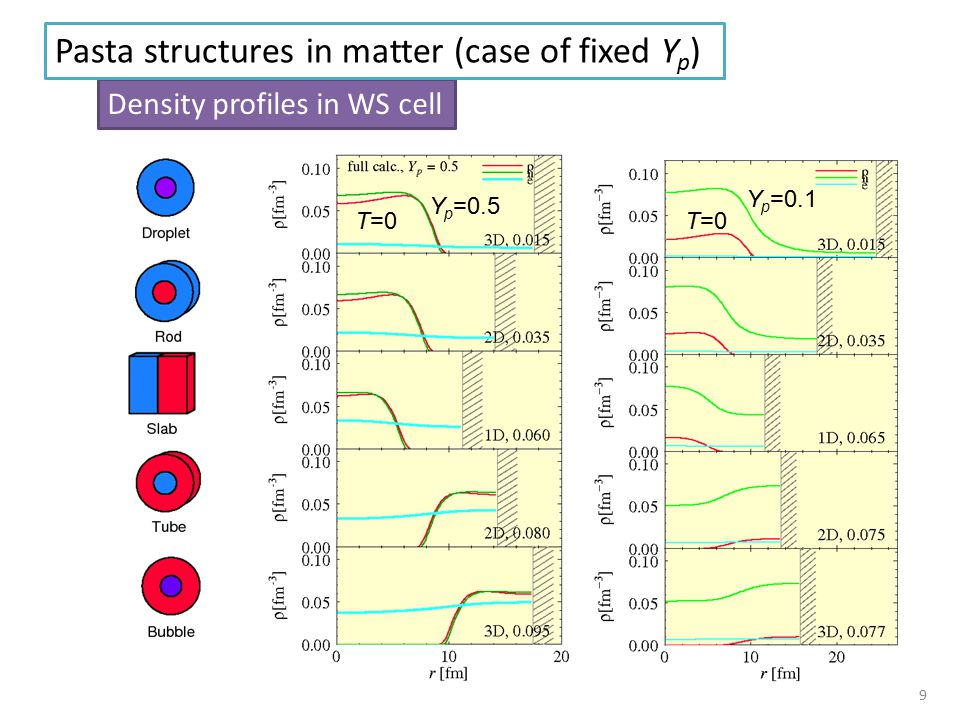 Density profiles in WS cell Pasta structures in matter (case of fixed Y p ) Y p =0.5 T=0 Y p =0.1 T=0 9