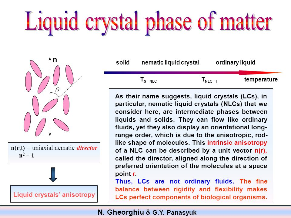 As their name suggests, liquid crystals (LCs), in particular, nematic liquid crystals (NLCs) that we consider here, are intermediate phases between liquids and solids.