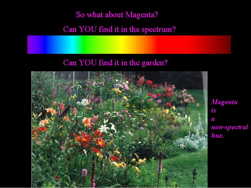 Magenta is a non-spectral hue.