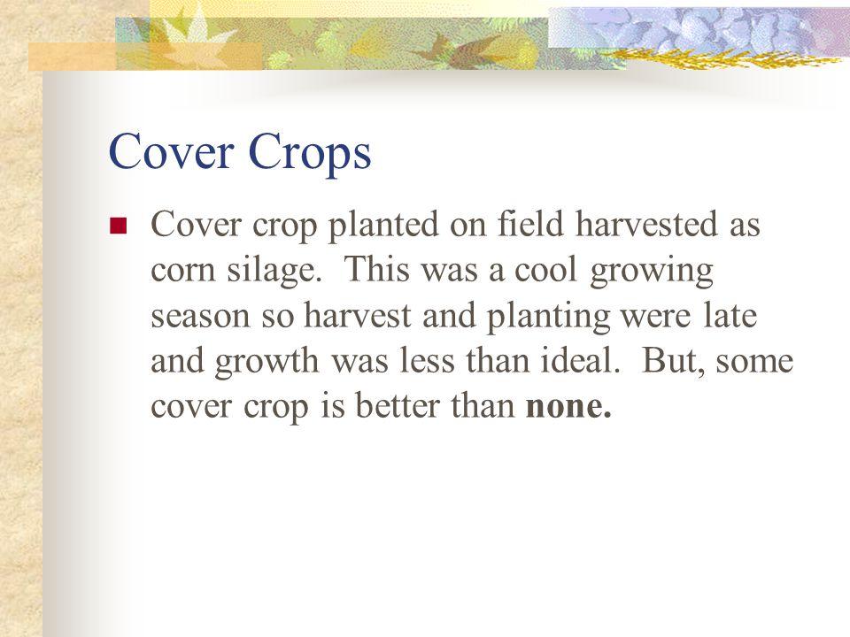 Strip crops on Maxwell Farms
