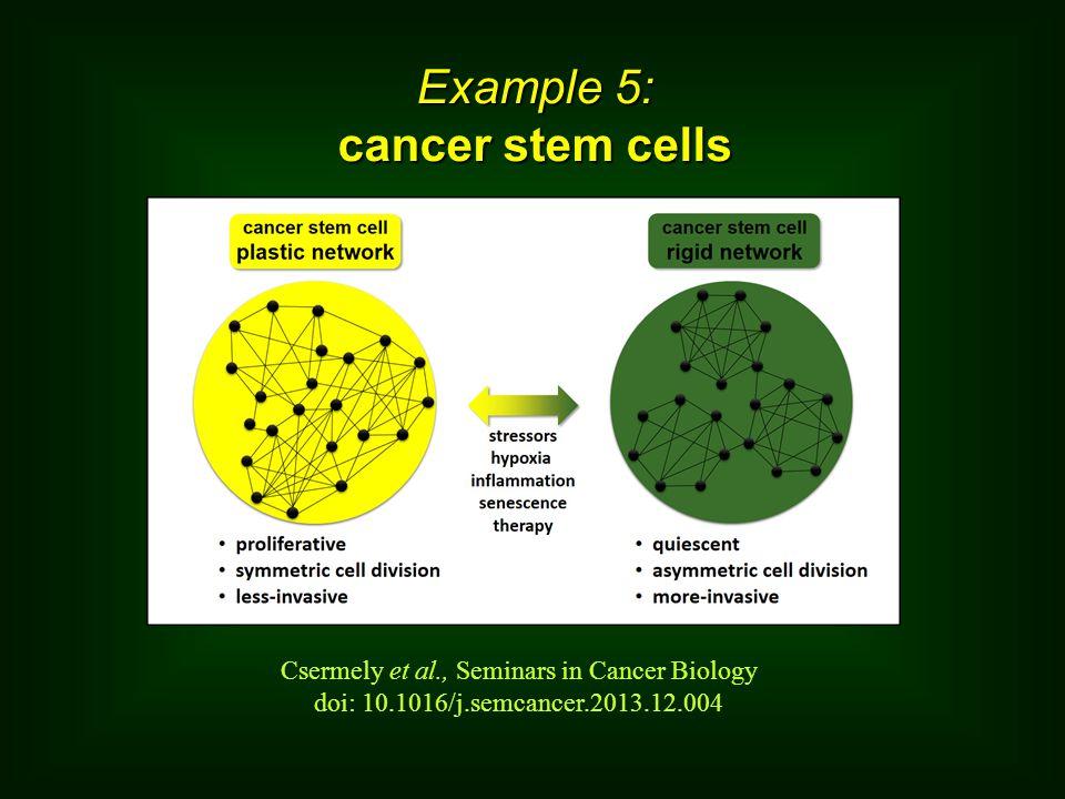 Example 5: cancer stem cells Csermely et al., Seminars in Cancer Biology doi: 10.1016/j.semcancer.2013.12.004