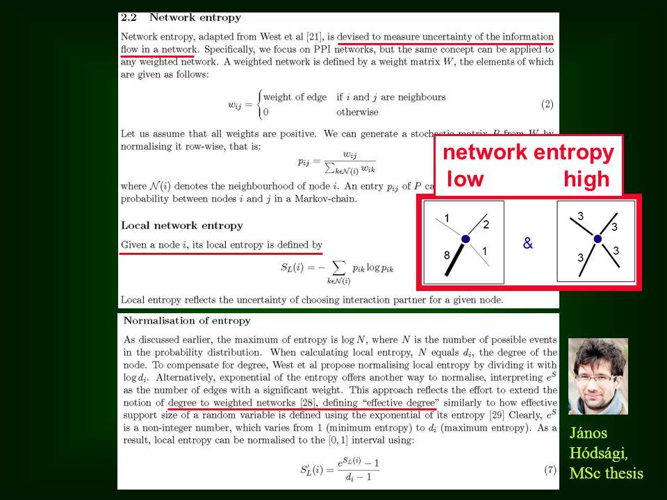 János Hódsági, MSc thesis network entropy low high