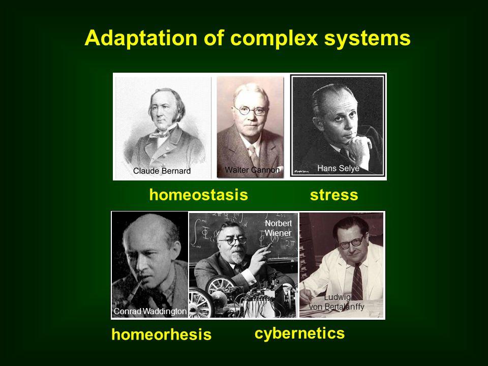 Adaptation of complex systems homeostasisstress homeorhesis cybernetics Conrad Waddington Norbert Wiener Ludwig von Bertalanffy