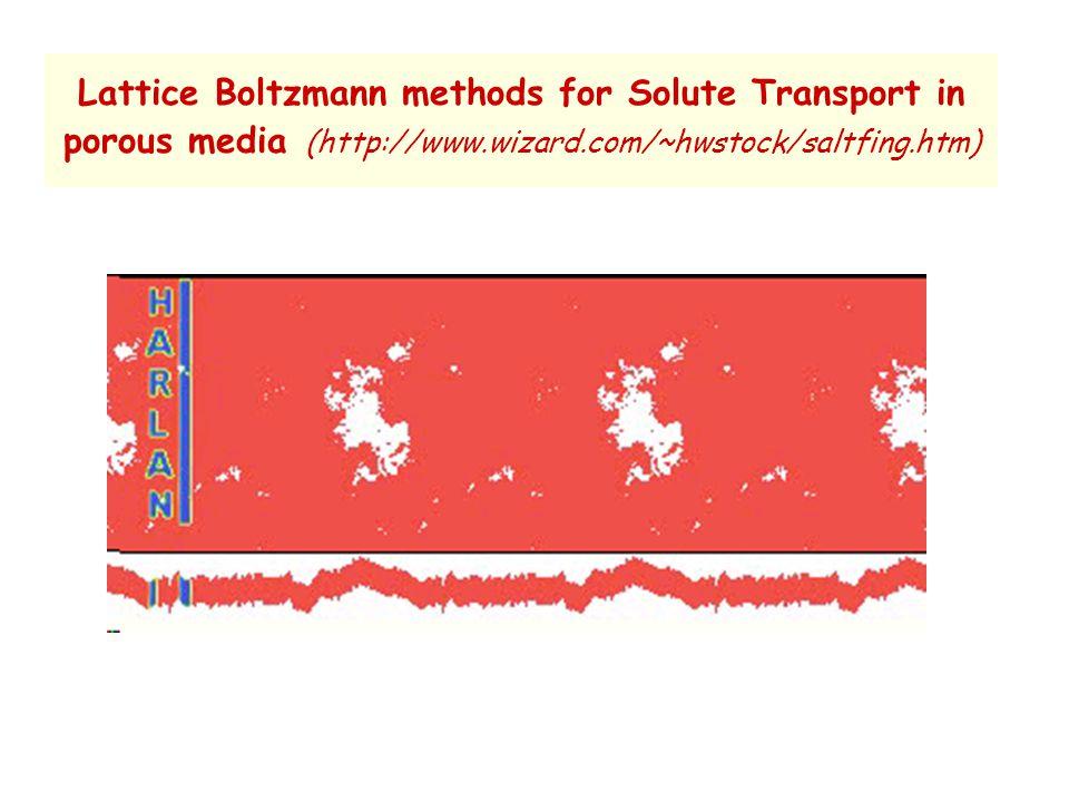 Lattice Boltzmann methods for Solute Transport in porous media (http://www.wizard.com/~hwstock/saltfing.htm)