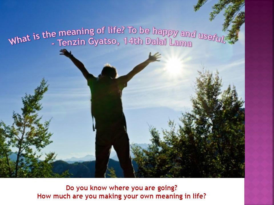 Do you know where you are going? How much are you making your own meaning in life?