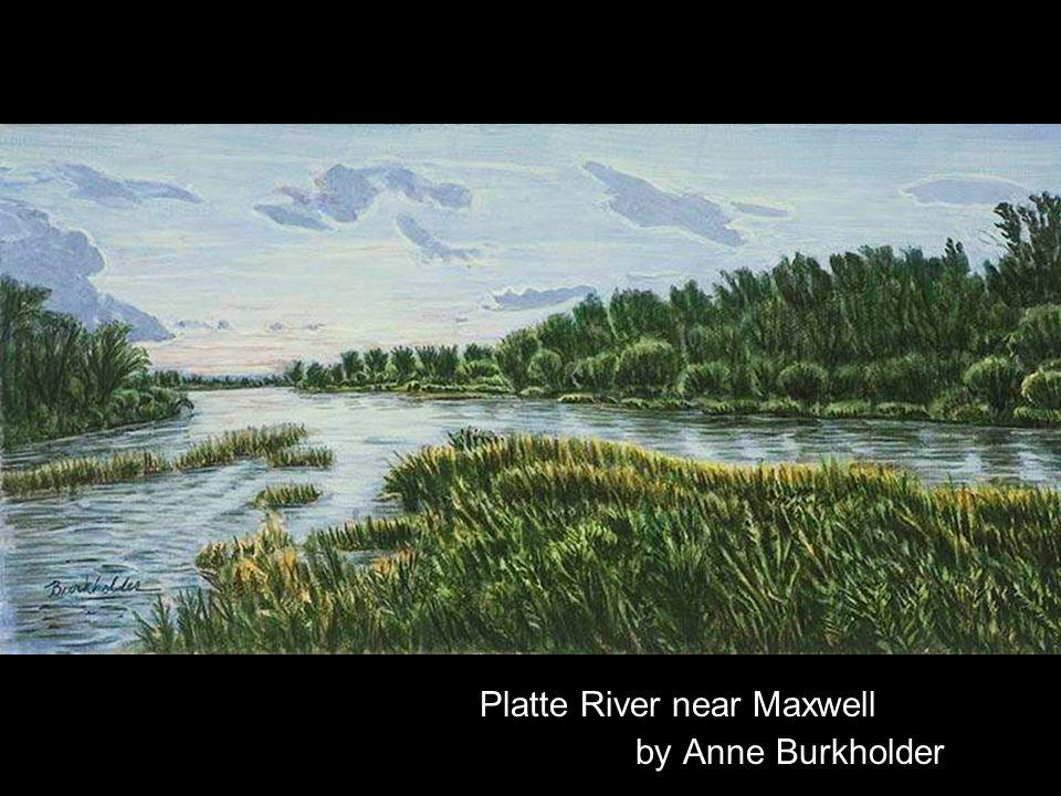 Platte River near Maxwell by Anne Burkholder