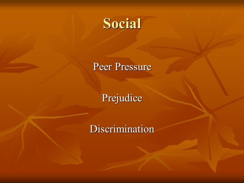 Social Peer Pressure PrejudiceDiscrimination