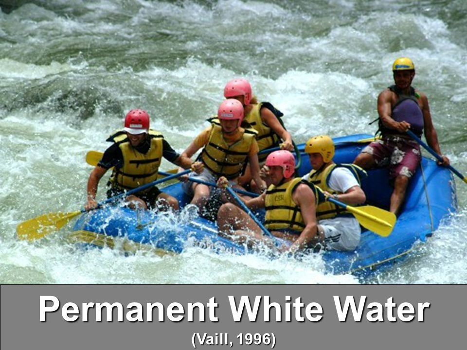 Permanent White Water (Vaill, 1996)