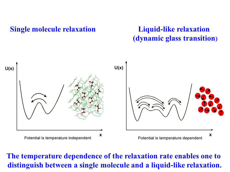Single molecule relaxationLiquid-like relaxation (dynamic glass transition ) The temperature dependence of the relaxation rate enables one to distinguish between a single molecule and a liquid-like relaxation.