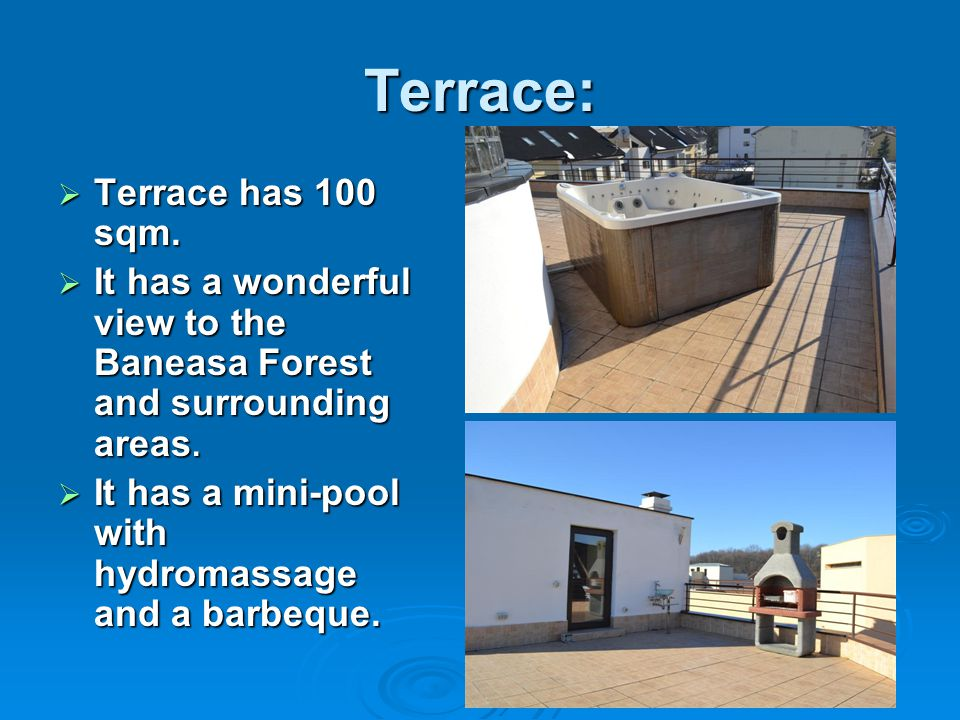 Terrace:  Terrace has 100 sqm.  It has a wonderful view to the Baneasa Forest and surrounding areas.  It has a mini-pool with hydromassage and a ba