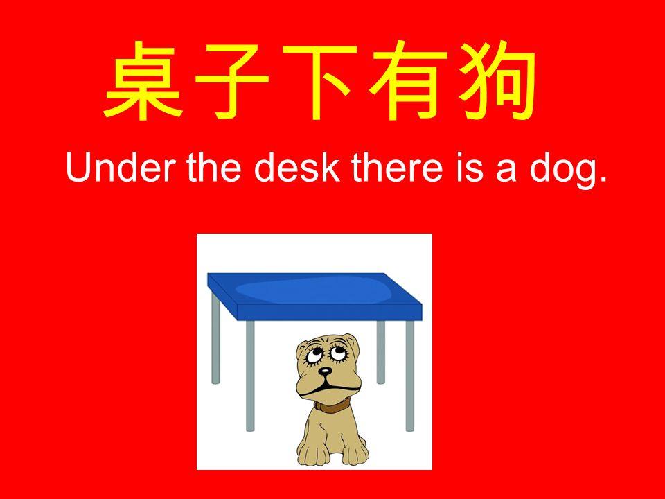 桌子下有狗 Under the desk there is a dog.