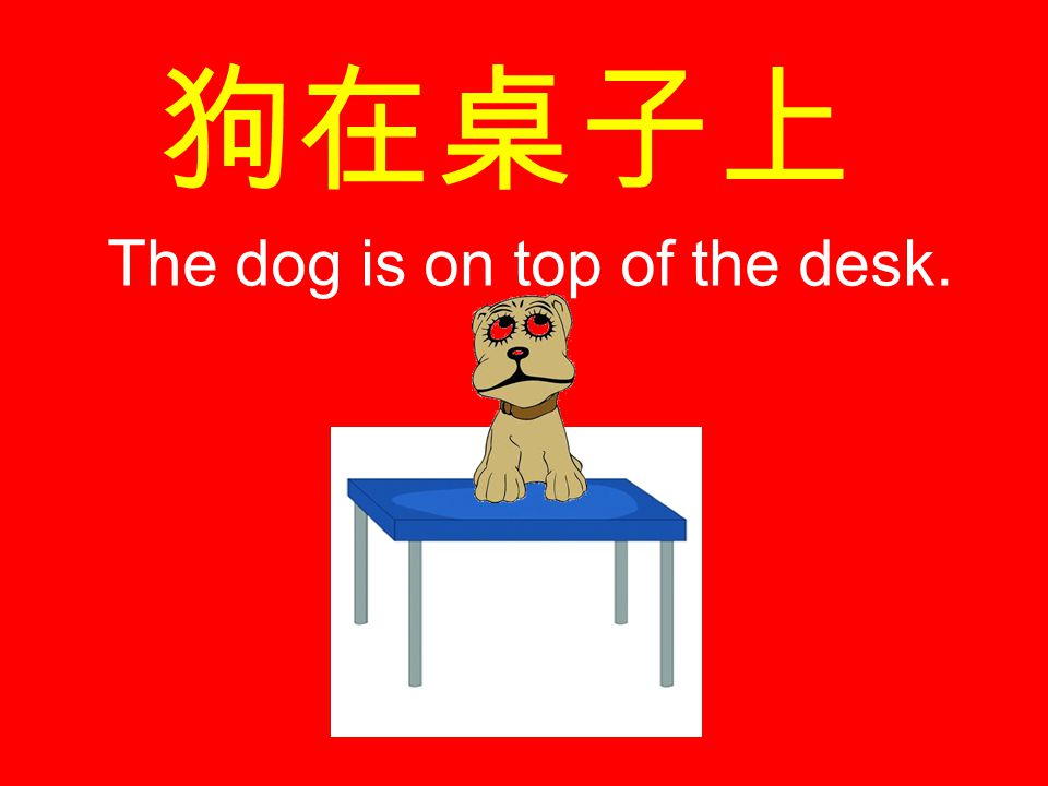 狗在桌子上 The dog is on top of the desk.