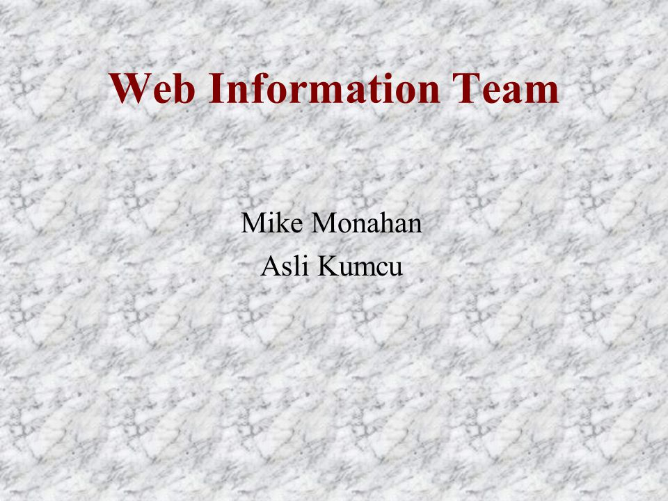 Web Information Team Mike Monahan Asli Kumcu