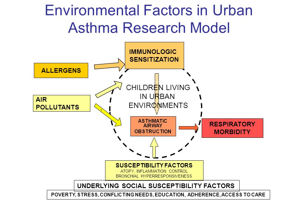 Environmental Factors in Urban Asthma Research Model RESPIRATORY MORBIDITY SUSCEPTIBILITY FACTORS ATOPY, INFLAMMATION CONTROL BRONCHIAL HYPERRESPONSIV