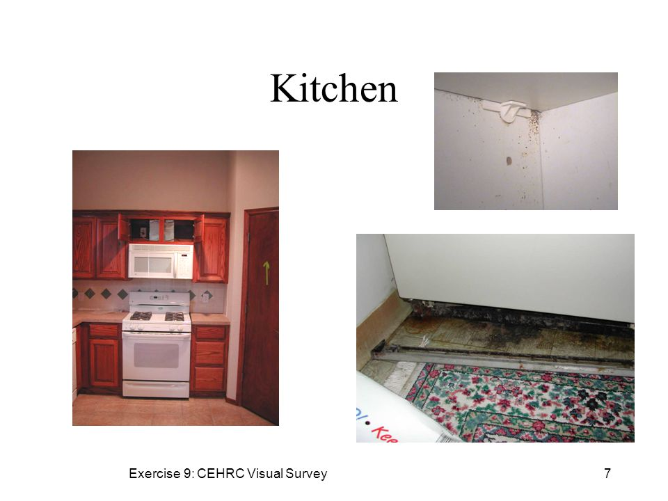 Exercise 9: CEHRC Visual Survey7 Kitchen