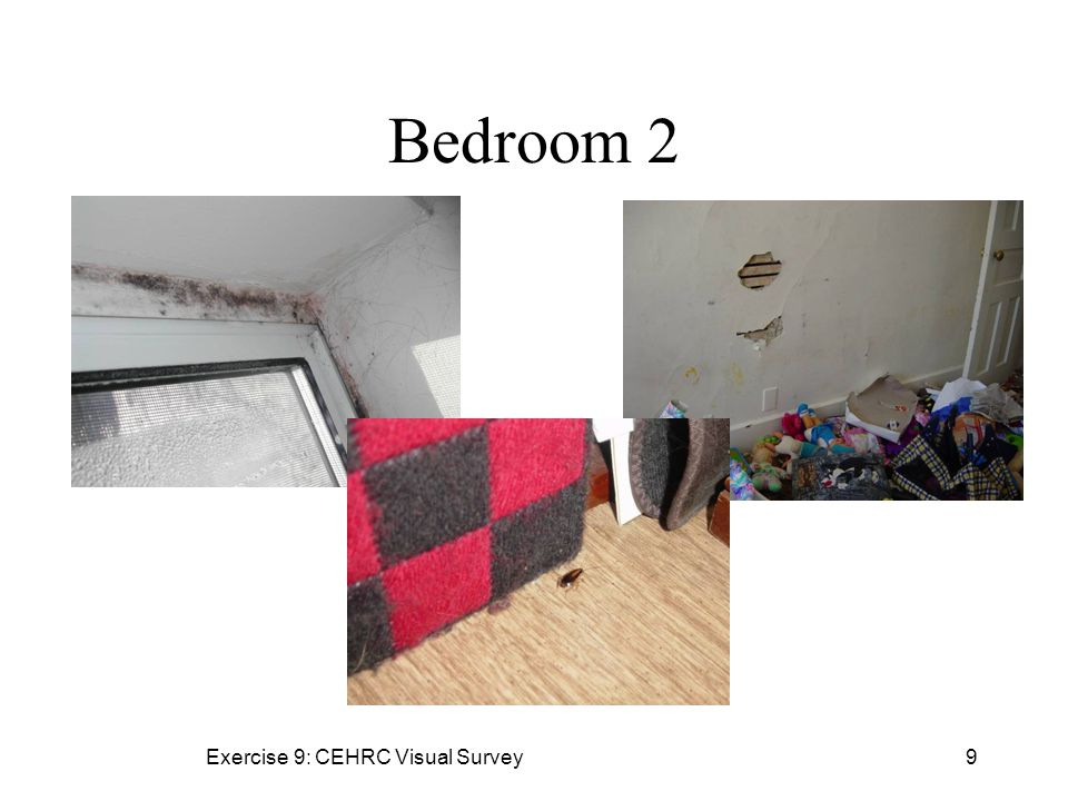 Exercise 9: CEHRC Visual Survey9 Bedroom 2