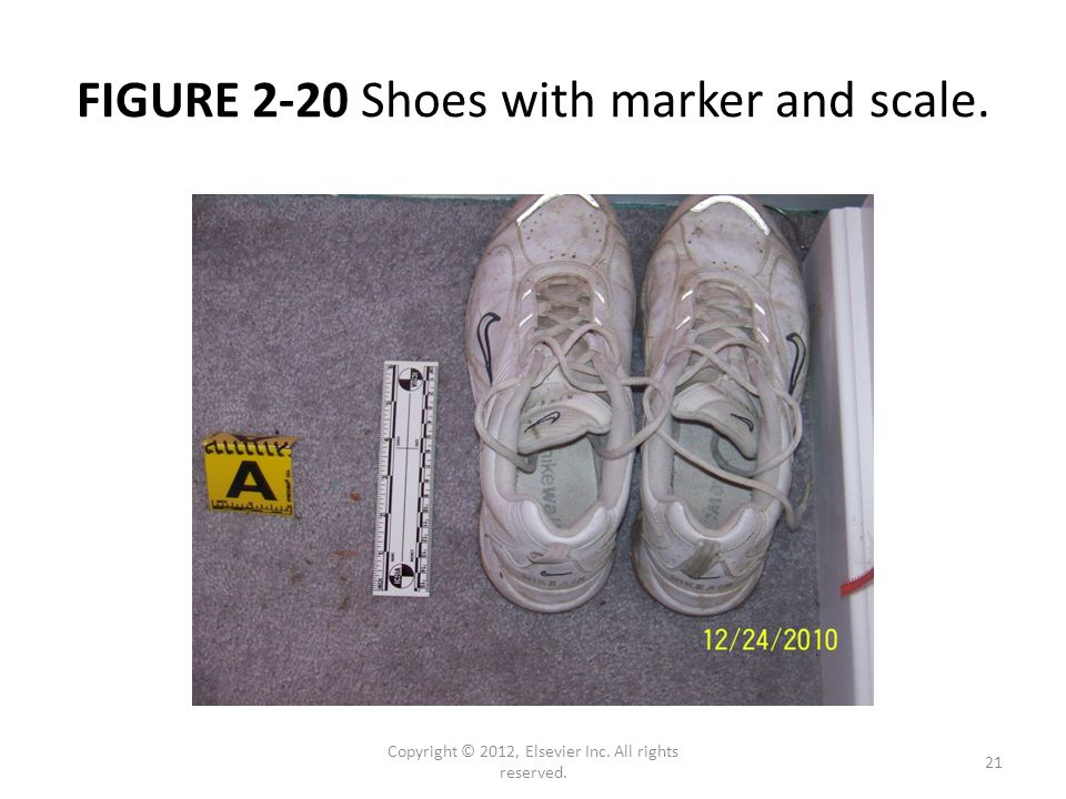 FIGURE 2-20 Shoes with marker and scale. Copyright © 2012, Elsevier Inc. All rights reserved. 21