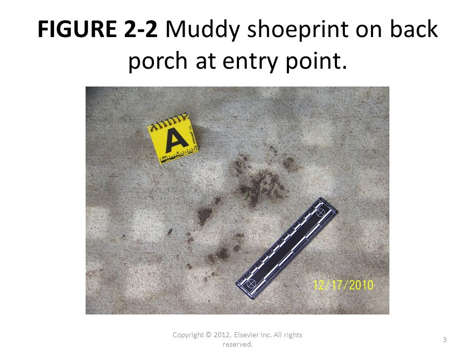 FIGURE 2-2 Muddy shoeprint on back porch at entry point.