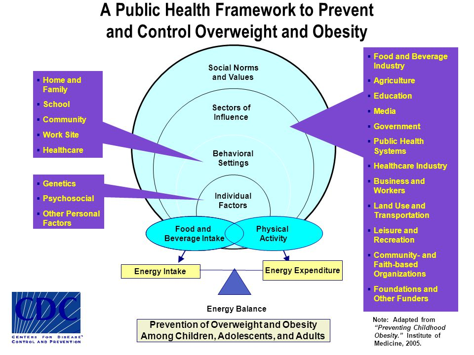 A Public Health Framework to Prevent and Control Overweight and Obesity Energy Intake Energy Expenditure Energy Balance Prevention of Overweight and Obesity Among Children, Adolescents, and Adults Note: Adapted from Preventing Childhood Obesity. Institute of Medicine, 2005.