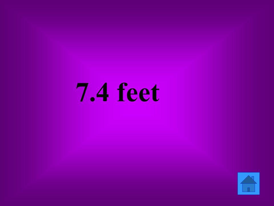 7.4 feet