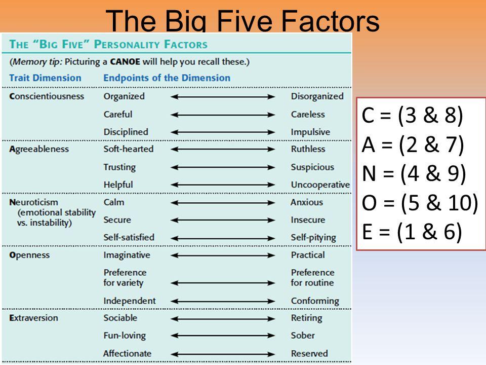 The Big Five Factors C = (3 & 8) A = (2 & 7) N = (4 & 9) O = (5 & 10) E = (1 & 6)