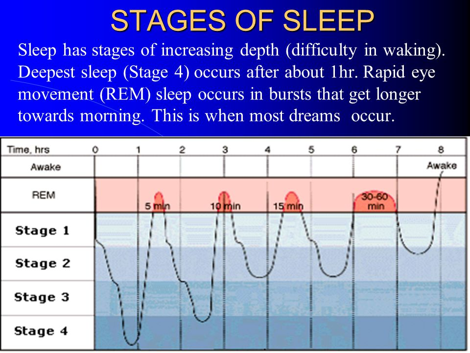 STAGES OF SLEEP Sleep has stages of increasing depth (difficulty in waking). Deepest sleep (Stage 4) occurs after about 1hr. Rapid eye movement (REM)