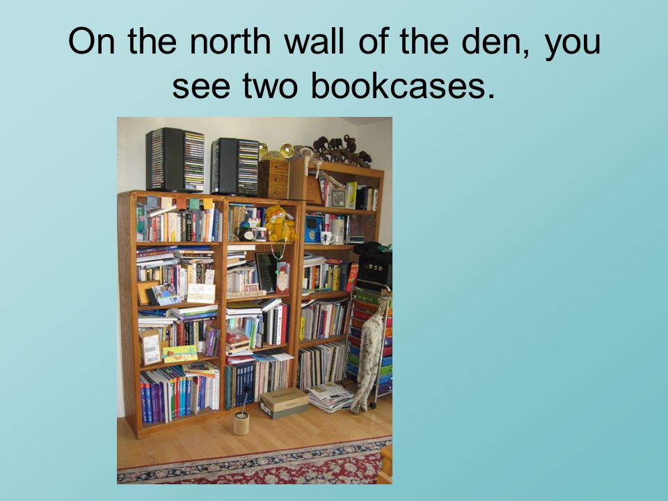 On the north wall of the den, you see two bookcases.
