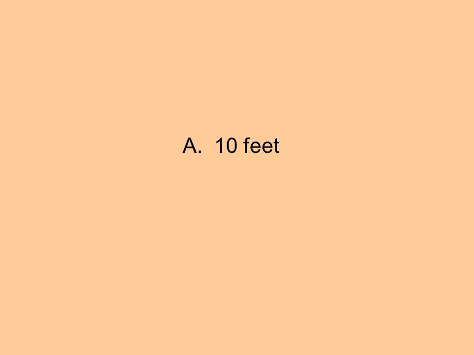 A. 10 feet