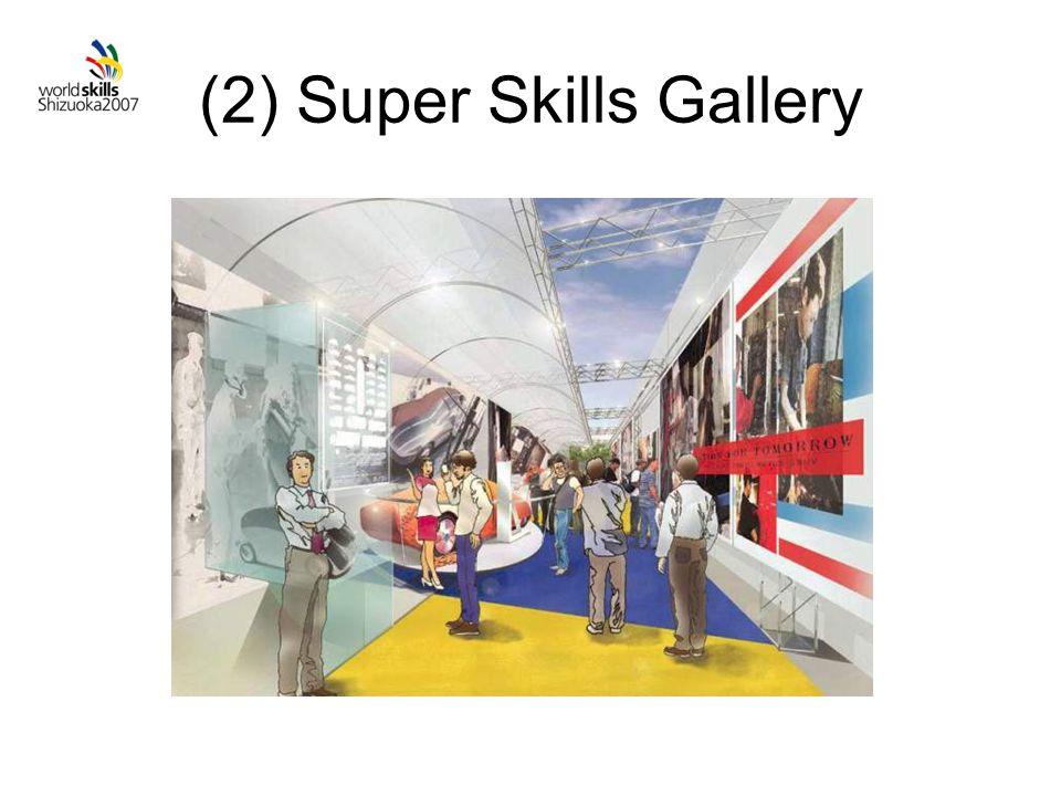 (2) Super Skills Gallery