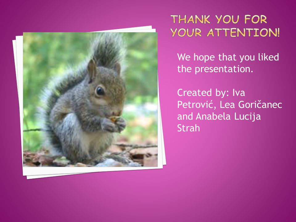 We hope that you liked the presentation.