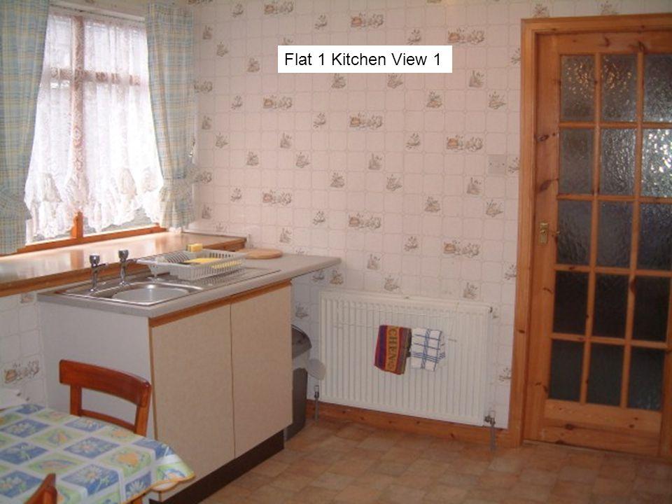 Flat 1 Kitchen View 1