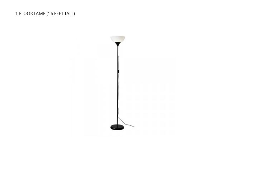 1 FLOOR LAMP (~6 FEET TALL)