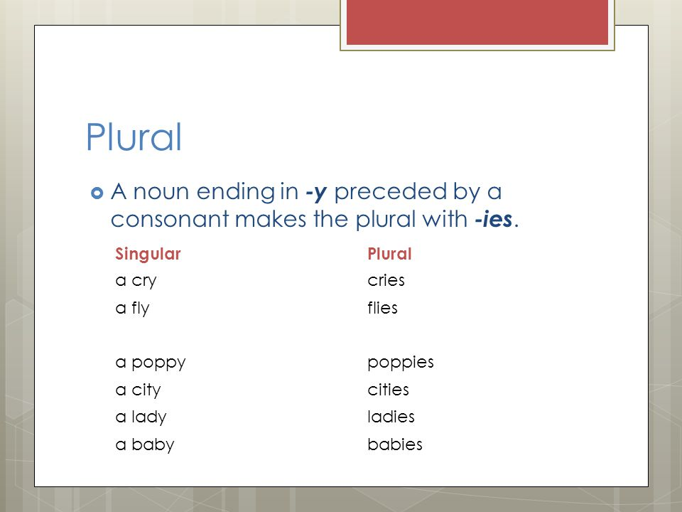 Plural  A noun ending in -y preceded by a consonant makes the plural with -ies.