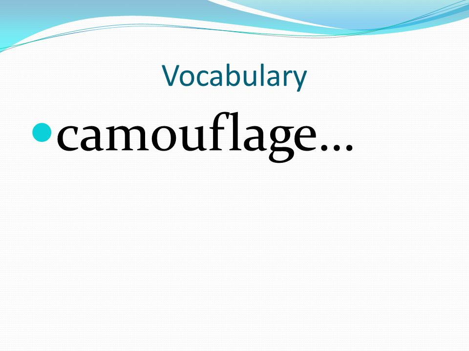 Vocabulary camouflage…
