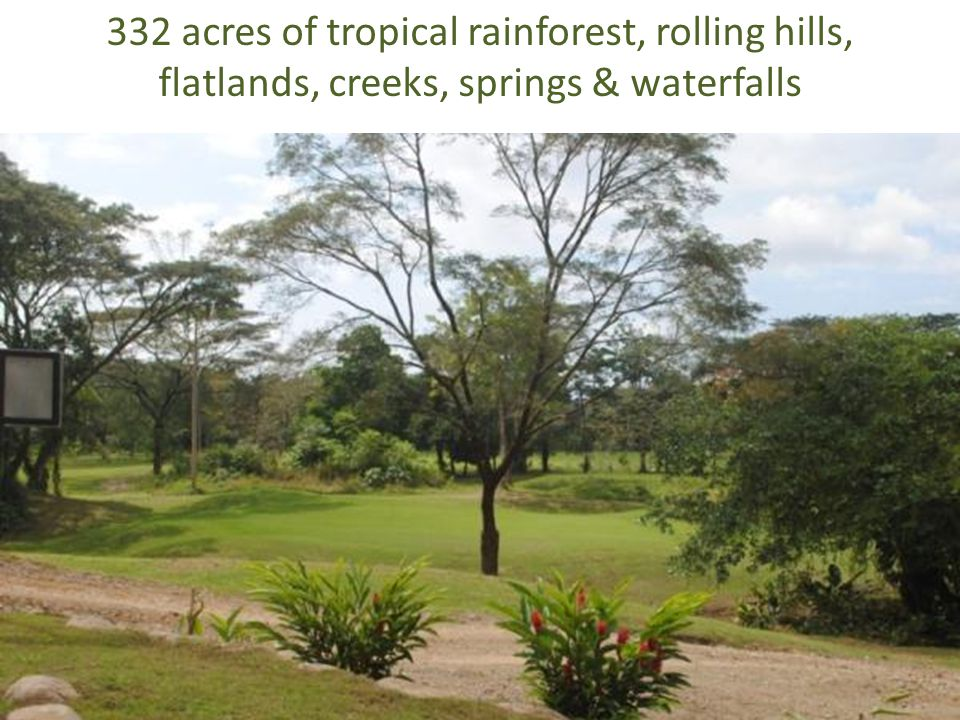 332 acres of tropical rainforest, rolling hills, flatlands, creeks, springs & waterfalls