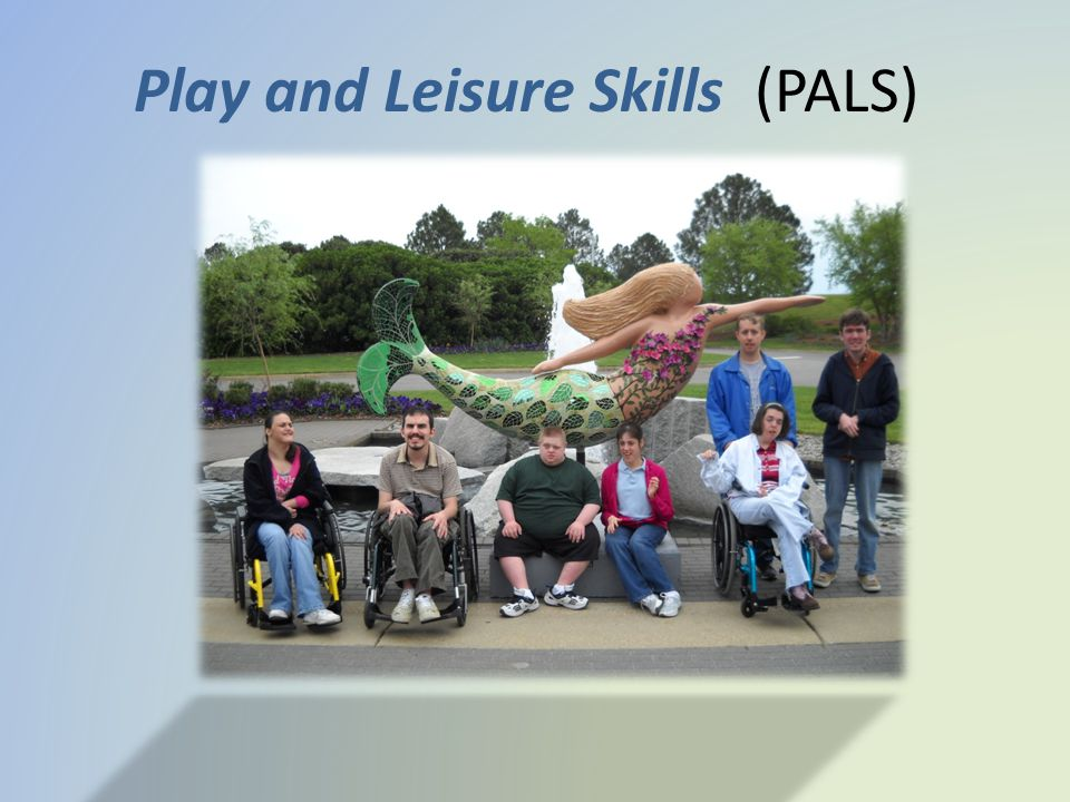 Play and Leisure Skills (PALS)