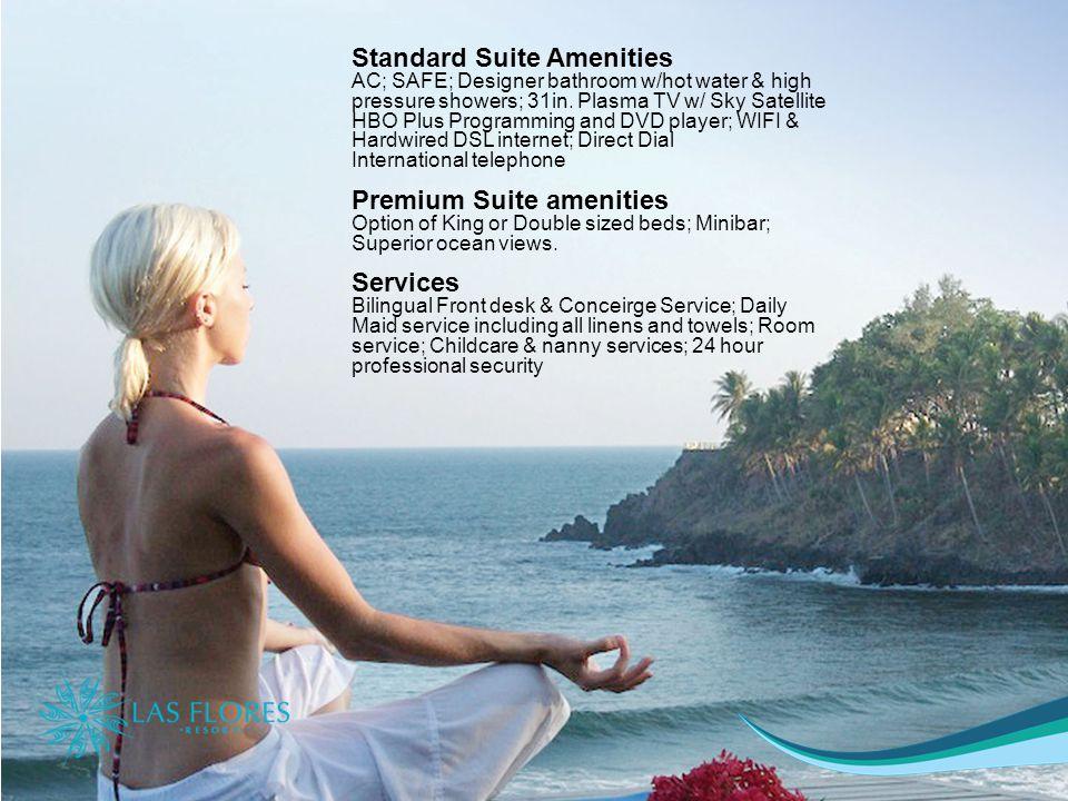 Standard Suite Amenities AC; SAFE; Designer bathroom w/hot water & high pressure showers; 31in.