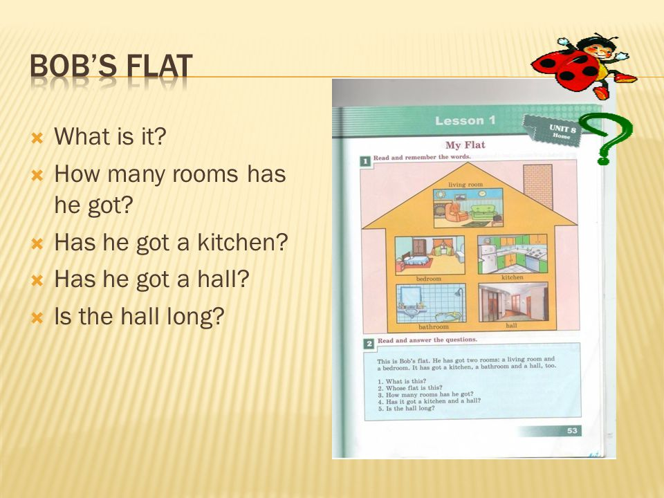  What is it?  How many rooms has he got?  Has he got a kitchen?  Has he got a hall?  Is the hall long?