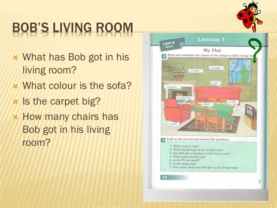  What has Bob got in his living room?  What colour is the sofa?  Is the carpet big?  How many chairs has Bob got in his living room?