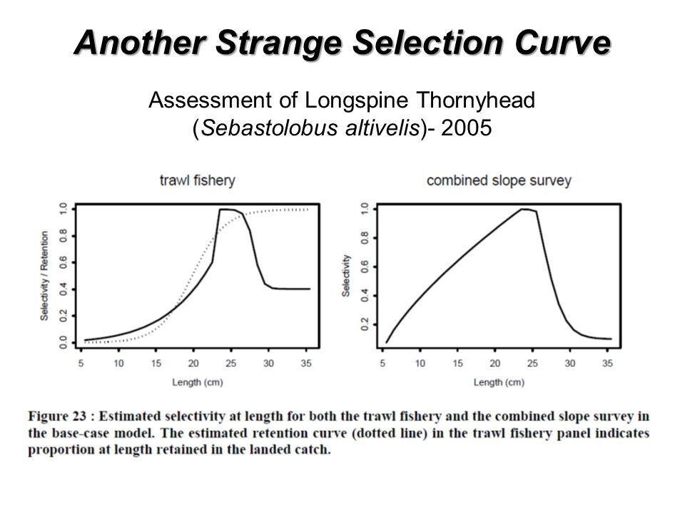 Another Strange Selection Curve Assessment of Longspine Thornyhead (Sebastolobus altivelis)- 2005