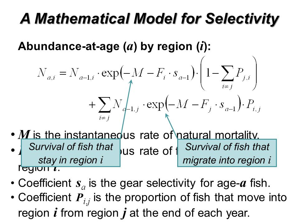 M is the instantaneous rate of natural mortality. F i is the instantaneous rate of fishing mortality in region i. Coefficient s a is the gear selectiv