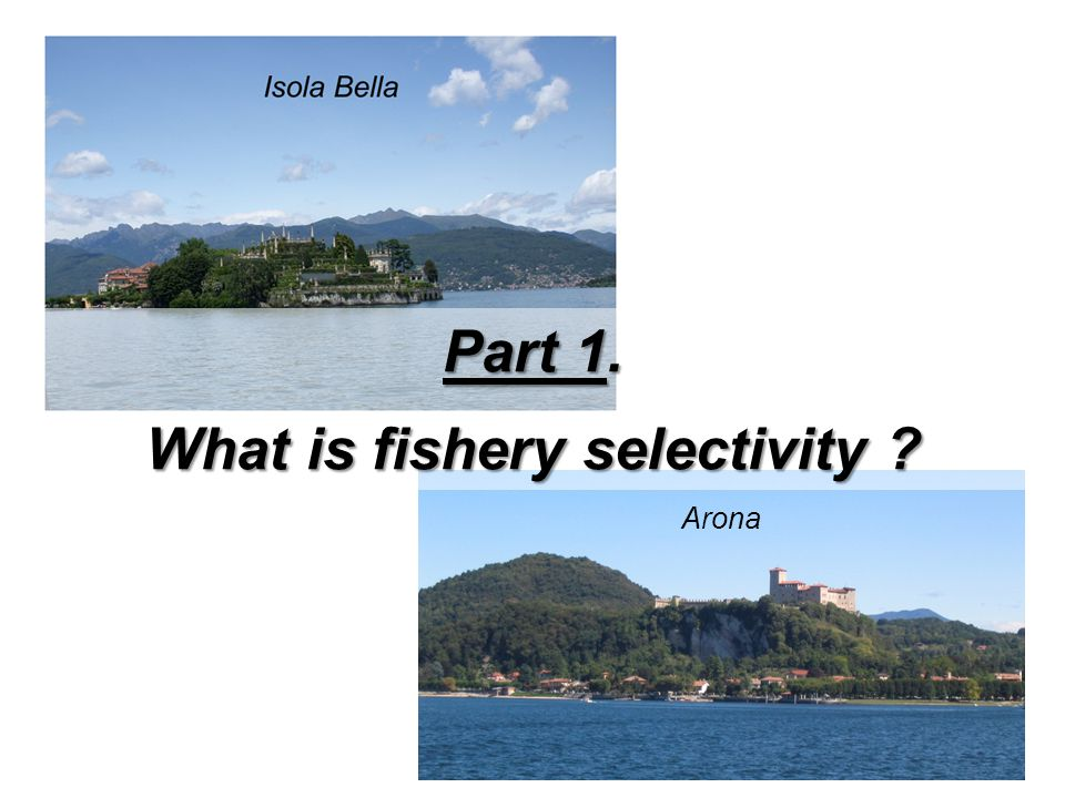 Arona Part 1. What is fishery selectivity ?