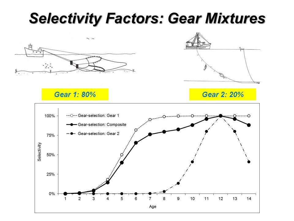 Selectivity Factors: Gear Mixtures Gear 1: 20%Gear 2: 80%Gear 1: 40%Gear 2: 60%Gear 1: 60%Gear 2: 40%Gear 1: 80%Gear 2: 20%